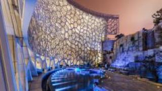 Удивительный проект Музея естественной истории в Шанхае
