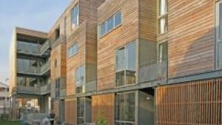 В правительстве решили поддержать деревянное домостроение