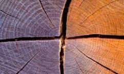 Чем заделать щели в деревянном доме из бревен и бруса
